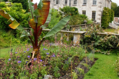 2015-07-15 Kingston Maurward Gardens & Animal Park, Dorchester, Dorset.  (21)021