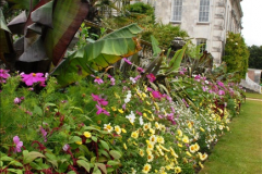 2015-07-15 Kingston Maurward Gardens & Animal Park, Dorchester, Dorset.  (22)022