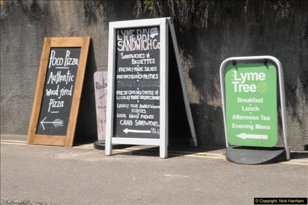 2015-06-25 Lyme Regis, Dorset.  (27)27