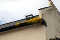 2015-06-25 Lyme Regis, Dorset.  (45)45