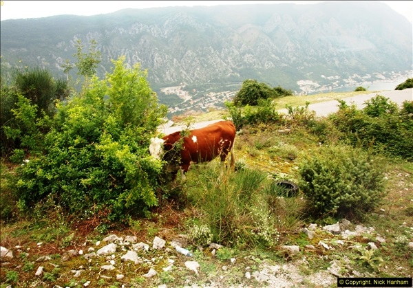 2014-09-22 Kotor, Montenegro + Montenegro Tour & Perast and Our Lady of the Rocks.  (70)070