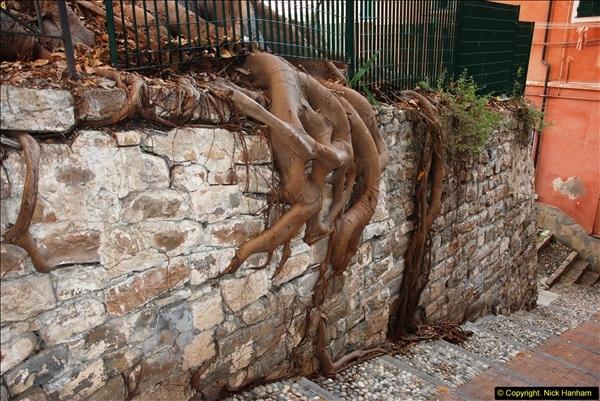 2014-09-11 San Remo. Italy.  (111)111
