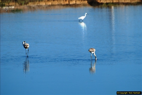 2014-09-14 Trapani, Sicily (Italy) + Erice & Segesta.  (56)056