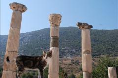 2016-10-04 Ephesus, Turkey.  (106)106