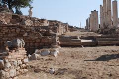 2016-10-04 Ephesus, Turkey.  (125)125