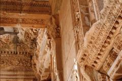 2016-10-04 Ephesus, Turkey.  (167)167