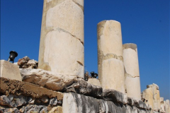 2016-10-04 Ephesus, Turkey.  (175)175