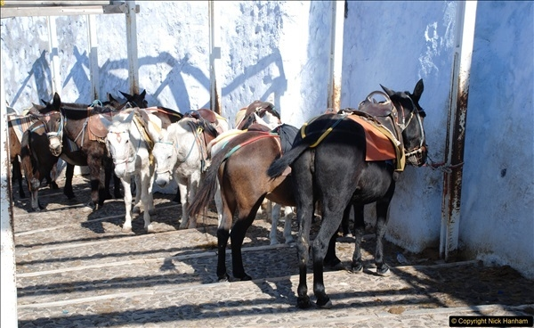 2010-10-06 Santorini, Greece.  (220)220