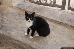 2010-10-06 Santorini, Greece.  (54)054
