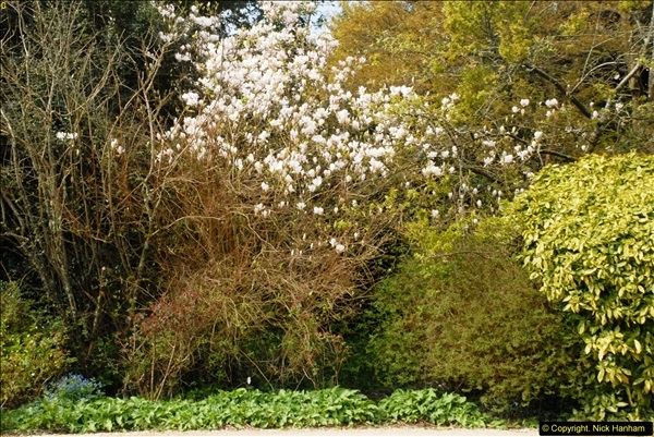 2015-04-17 Minterne Magna Gardens, Dorset.  (14)014