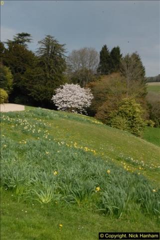 2015-04-17 Minterne Magna Gardens, Dorset.  (24)024