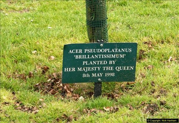 2015-04-17 Minterne Magna Gardens, Dorset.  (32)032
