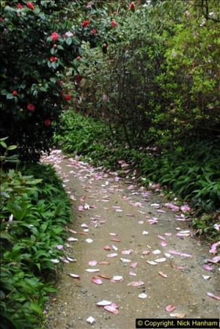 2015-04-17 Minterne Magna Gardens, Dorset.  (61)061