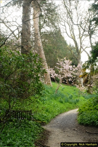 2015-04-17 Minterne Magna Gardens, Dorset.  (68)068