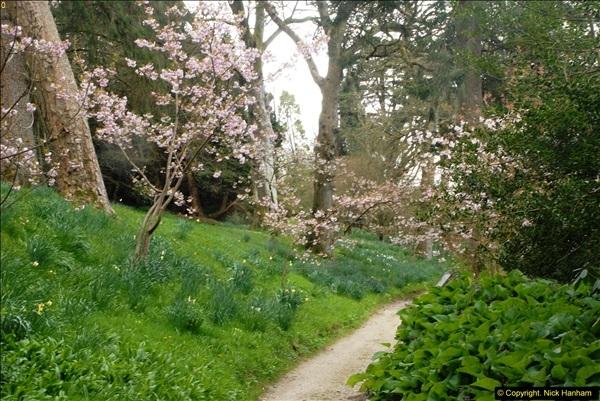 2015-04-17 Minterne Magna Gardens, Dorset.  (69)069