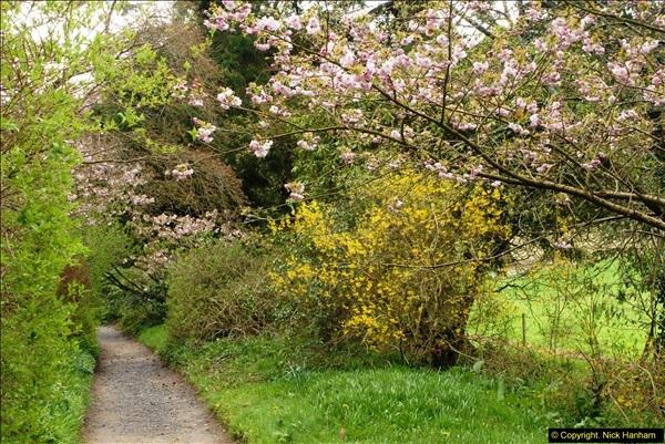 2015-04-17 Minterne Magna Gardens, Dorset.  (83)083