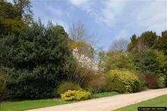 2015-04-17 Minterne Magna Gardens, Dorset.  (16)016