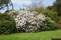 2015-04-17 Minterne Magna Gardens, Dorset.  (21)021