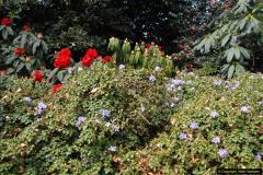 2015-04-17 Minterne Magna Gardens, Dorset.  (38)038