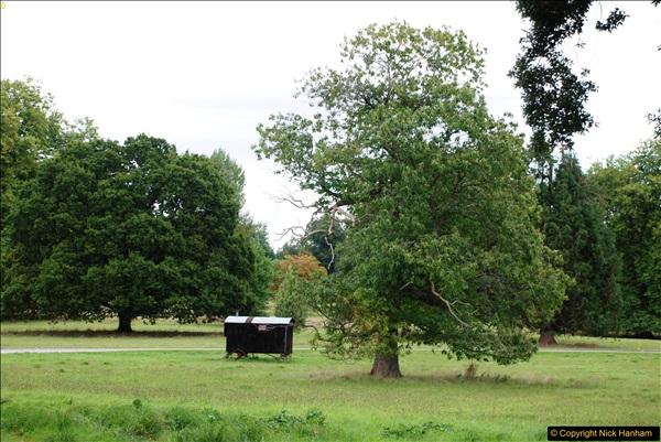 2016-09-17 Kingston Lacy House (NT), Wimborne, Dorset.  (137)238