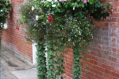 2016-09-17 Kingston Lacy House (NT), Wimborne, Dorset.  (146)247