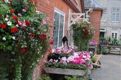 2016-09-17 Kingston Lacy House (NT), Wimborne, Dorset.  (147)248