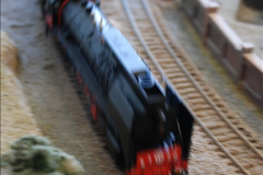 Some of your Host's model locomotives running on a friends railway.  (46)46