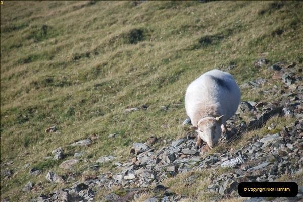 2018-10-10 Snowdon. (212)213