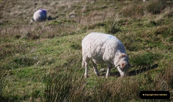 2018-10-10 Snowdon. (216)217