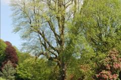 2016-05-14 Stourhead NT.  (79)079