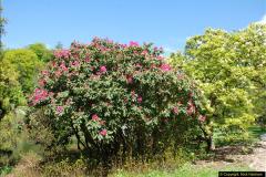 2016-05-14 Stourhead NT.  (89)089