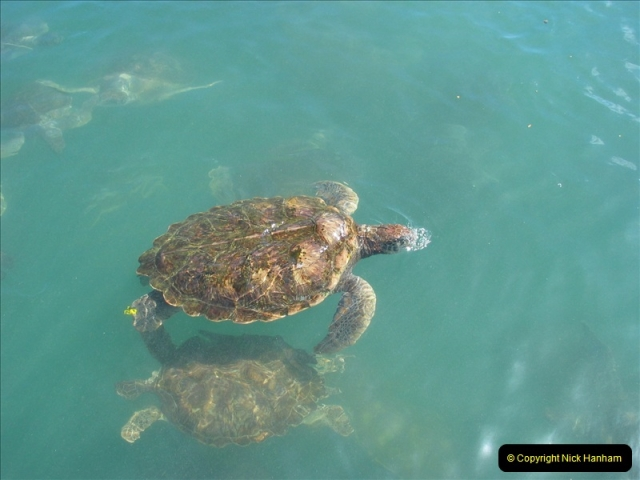 2005-11-12 Grand Caymen Islands.  (103)104