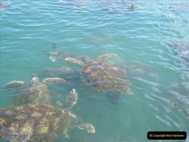 2005-11-12 Grand Caymen Islands.  (104)105