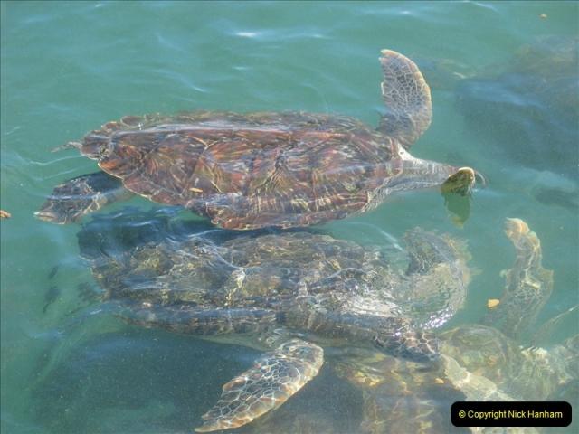 2005-11-12 Grand Caymen Islands.  (106)107