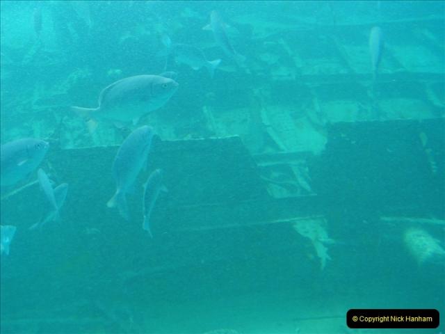 2005-11-12 Grand Caymen Islands.  (63)064