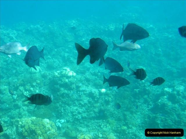 2005-11-12 Grand Caymen Islands.  (66)067