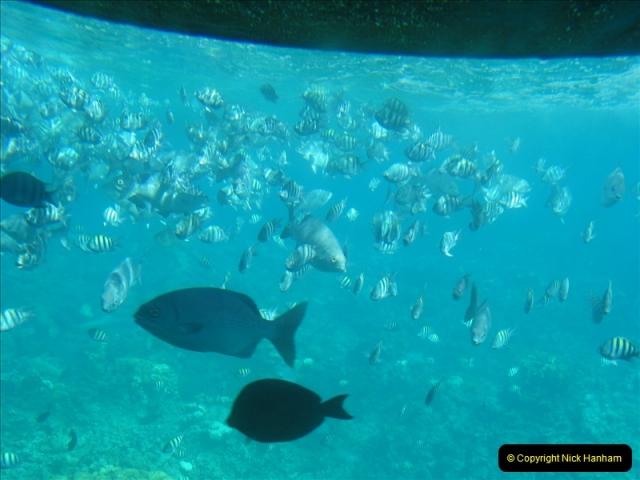 2005-11-12 Grand Caymen Islands.  (67)068