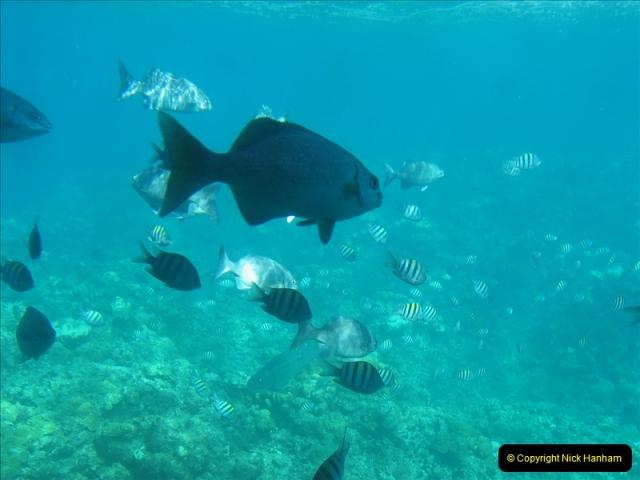 2005-11-12 Grand Caymen Islands.  (69)070