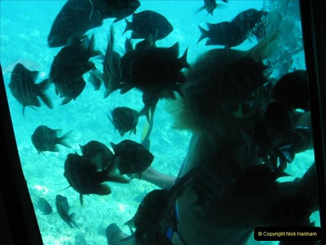 2005-11-12 Grand Caymen Islands.  (73)074
