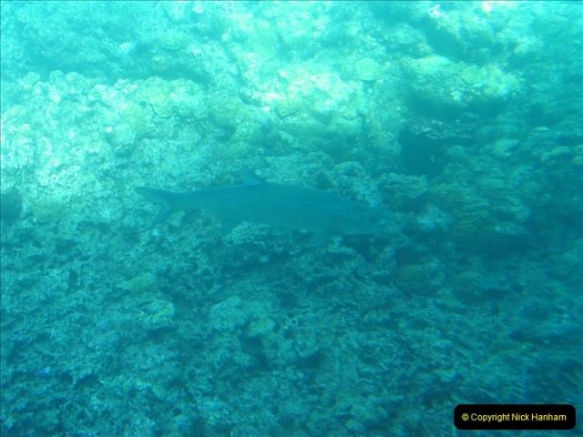 2005-11-12 Grand Caymen Islands.  (75)076