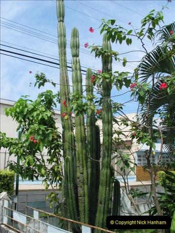 2005-11-20 Puntarenas, Costa Rica.  (7)400