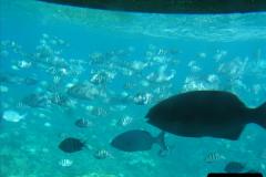 2005-11-12 Grand Caymen Islands.  (68)069