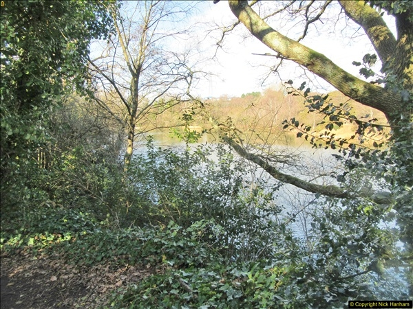 2018-02-05 Alder Hills (History) Parkstone, Poole, Dorset.  (19)047