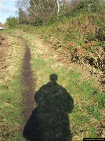 2018-02-05 Alder Hills (History) Parkstone, Poole, Dorset.  (22)050