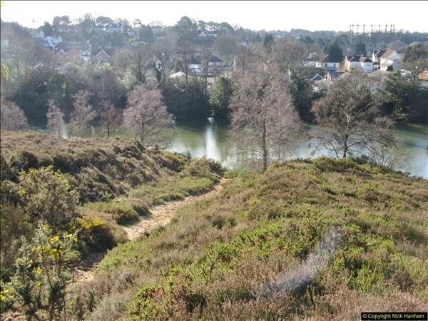 2018-02-05 Alder Hills (History) Parkstone, Poole, Dorset.  (24)052