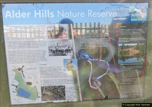 2018-02-05 Alder Hills (History) Parkstone, Poole, Dorset.  (5)033