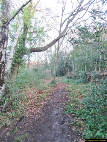 2018-02-16 Alder Hills Nature Reserve - A second visit.  (19)078