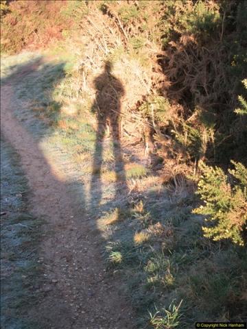 2018-02-16 Alder Hills Nature Reserve - A second visit.  (32)091