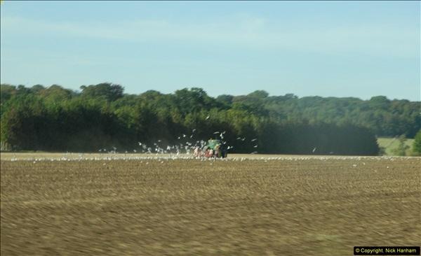 2013-09-30 Near Sywell, Northamptonshire.  (1)254