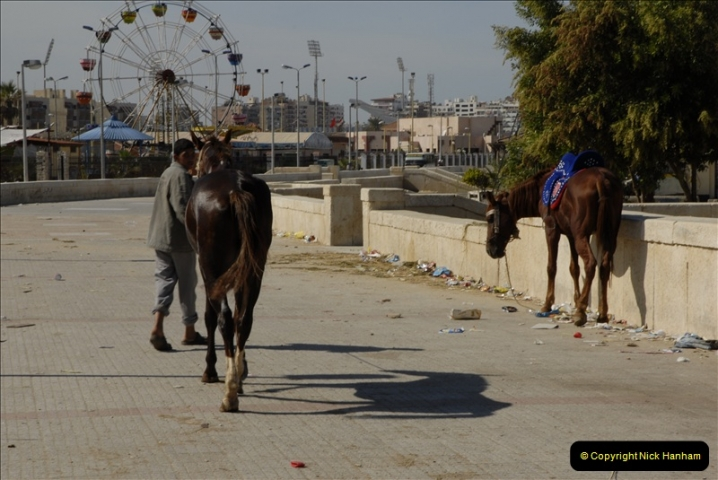 2011-11-09 Port Said, Egypt.  (68)